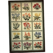 Botanical Flower Sampler